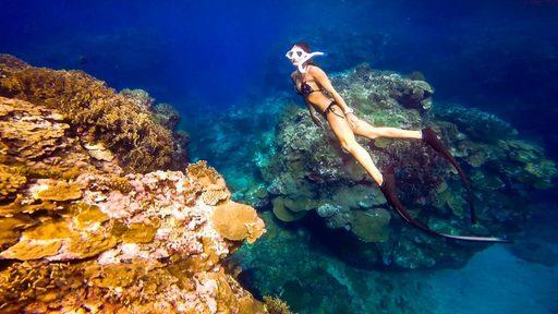Du lịch Đài Loan - Lặn ngắm san hô ở Kending